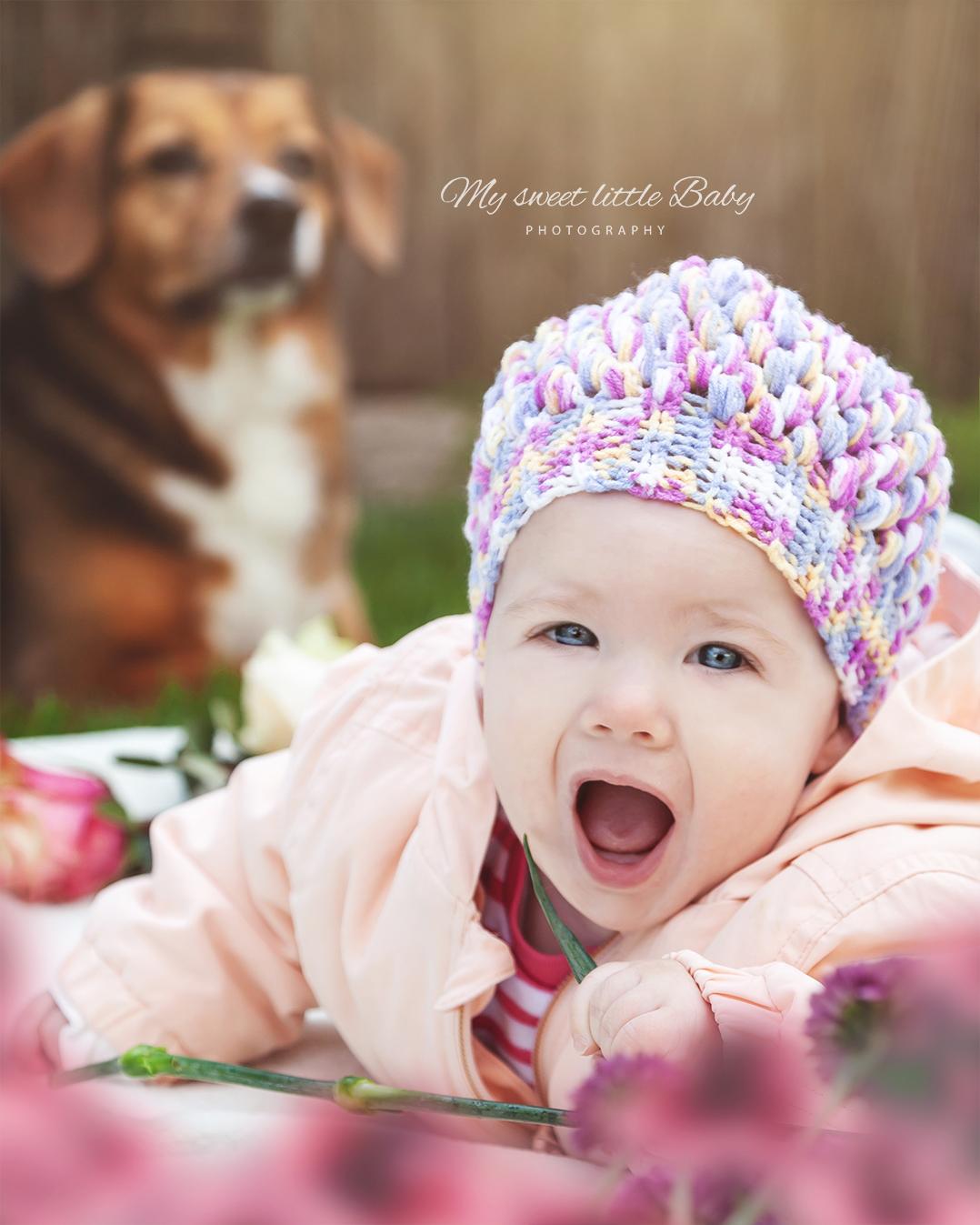 Babyfotos Mit Hund Zum Selbermachen Diy Outdoorfotografie